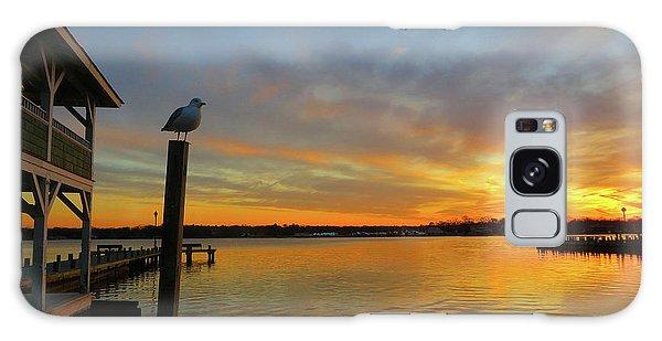 Gull Sunset Galaxy Case