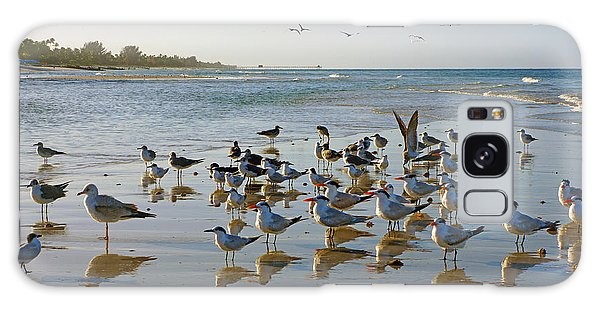 Gulls And Terns On The Sanbar At Lowdermilk Park Beach Galaxy Case