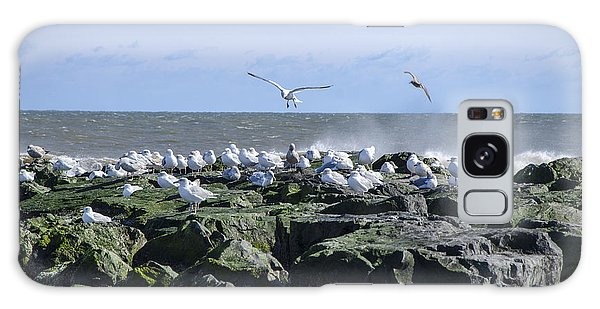 Gulls On Rock Jetty Galaxy Case by Maureen E Ritter