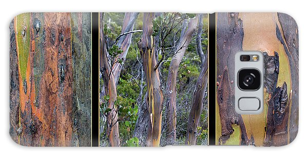 Gum Trees At Lake St Clair Galaxy Case by Werner Padarin