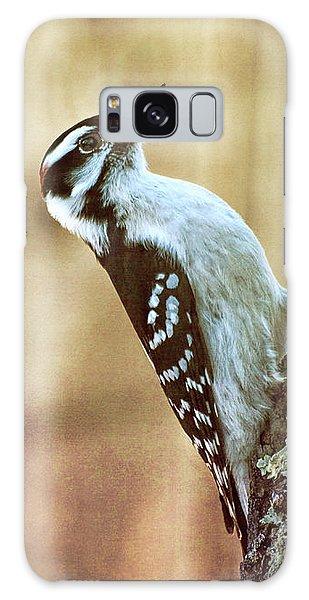 Hairy Woodpecker Galaxy Case