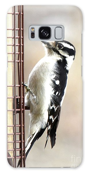 Hairy Woodpecker Galaxy Case