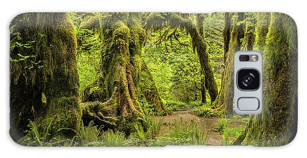 Hall Of Mosses - Olympic National Park Galaxy Case