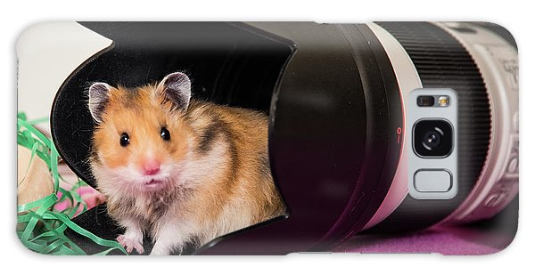 Hamster In The Hood Galaxy Case by Janis Knight