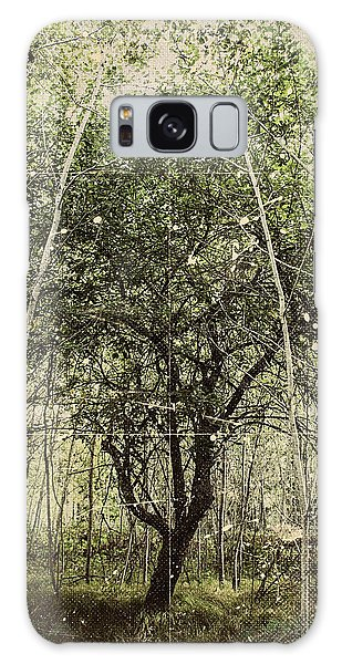 Hand Of God Apple Tree Poster Galaxy Case