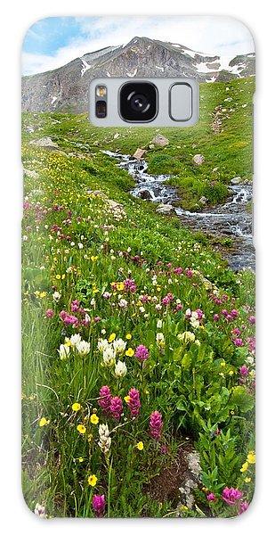 Handie's Peak And Alpine Meadow Galaxy Case