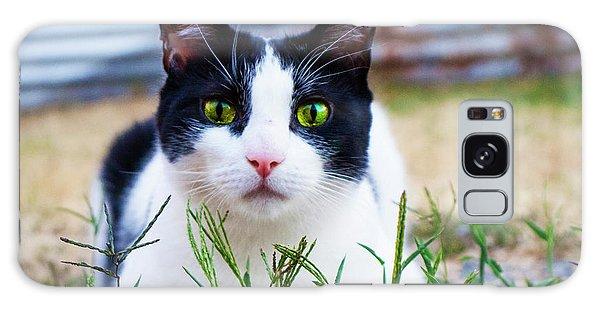 Happy Cat Galaxy Case
