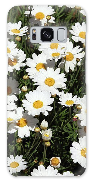Daisy Galaxy Case - Happy Daisies- Photography By Linda Woods by Linda Woods