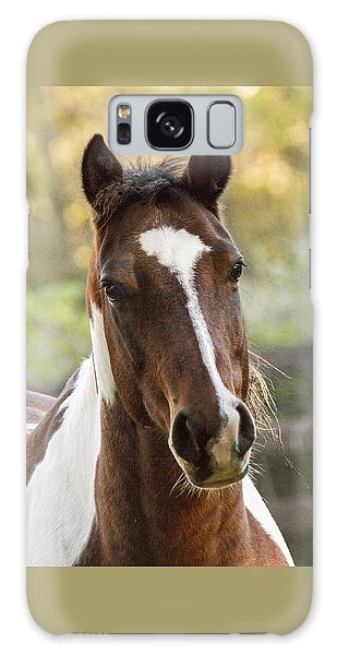 Happy Horse Galaxy Case