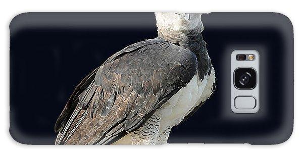 Harpy Eagle Galaxy Case