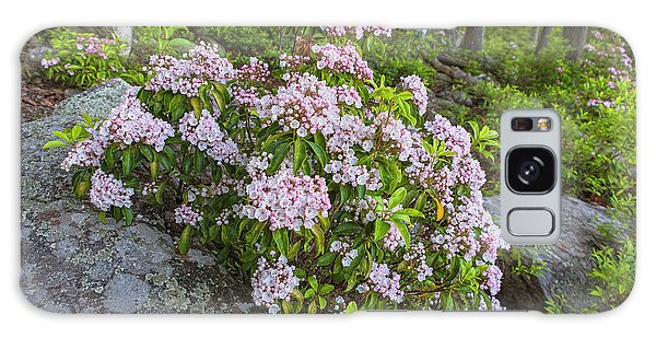 Harriman Pink And White Mountain Laurel Galaxy Case