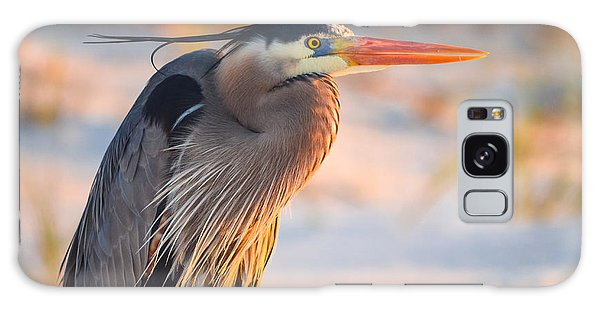 Harry The Heron With Plumage Close-up Galaxy Case