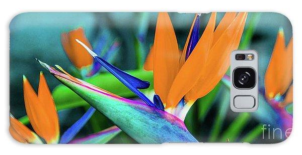 Hawaii Bird Of Paradise Flowers Galaxy Case