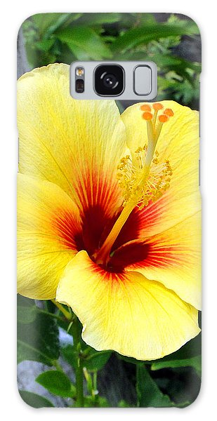 Hawaiian Hibiscus Galaxy Case
