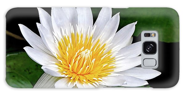 Hawaiian White Water Lily Galaxy Case