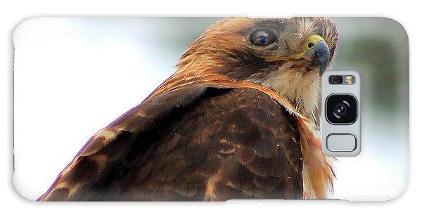 Hawk Galaxy Case by Bruce Patrick Smith