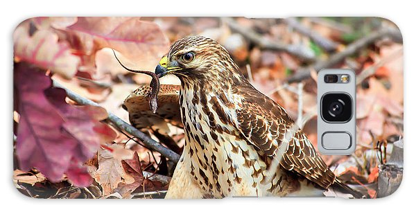 Hawk Catches Prey Galaxy Case