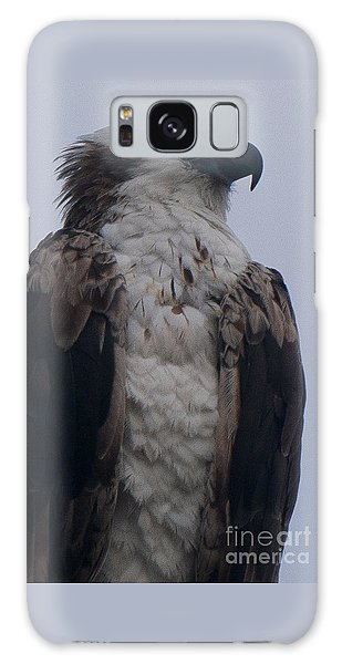 Hawk Looking Into The Distance Galaxy Case