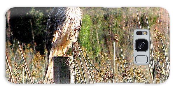 Hawk On Post Galaxy Case