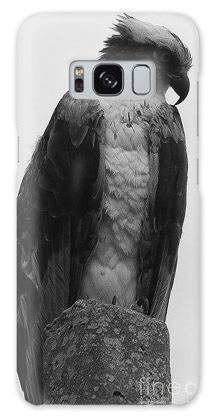 Hawk Perched Galaxy Case