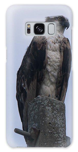 Hawk Pose Galaxy Case