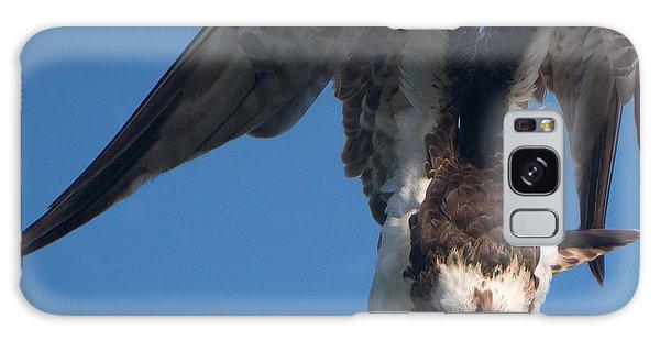 Hawk Prepares For Flight Galaxy Case