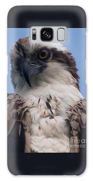 Hawk Profile Galaxy Case