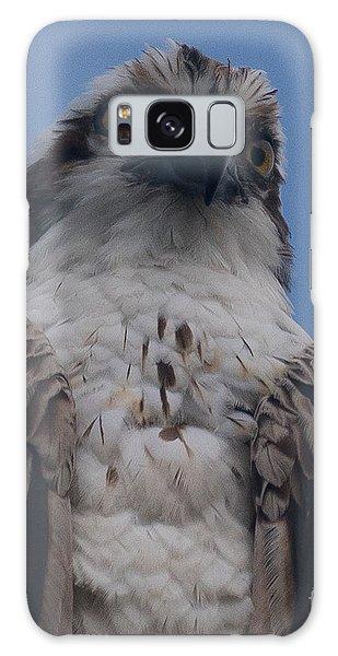Hawk Stare Galaxy Case