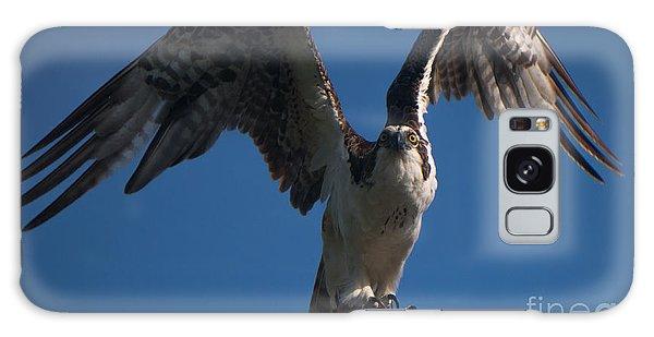 Hawk Wings Galaxy Case