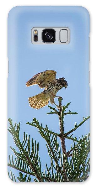 Hawk With Regal Landing Galaxy Case