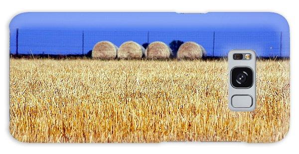 Hay Hay Galaxy Case by Debi Demetrion