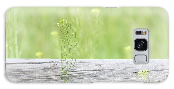 Galaxy Case featuring the photograph Hazy Yellow Wildflowers by Jennie Marie Schell