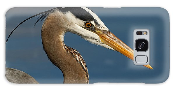 Head Of A Great Blue Heron Galaxy Case