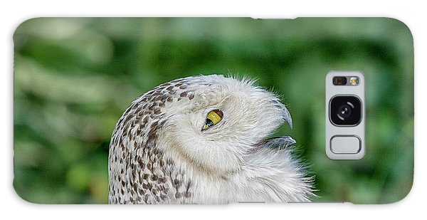 Head Of Snowy Owl Galaxy Case