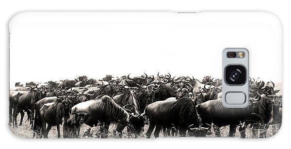 Herd Of Wildebeestes Galaxy Case
