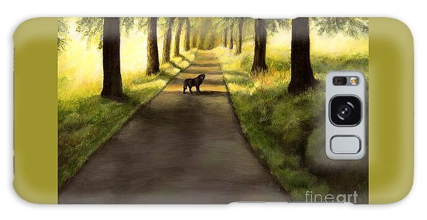 Serenity - Walk With Black Labrador Galaxy Case