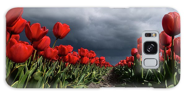 Heavy Clouds Over Red Tulips Galaxy Case by Mihaela Pater
