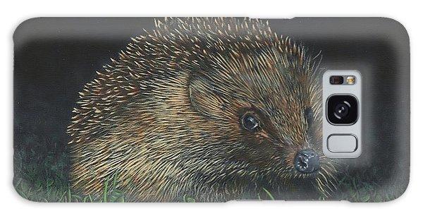 Hedgehog Galaxy Case