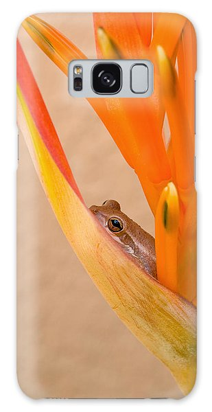Heliconia And Frog Galaxy Case