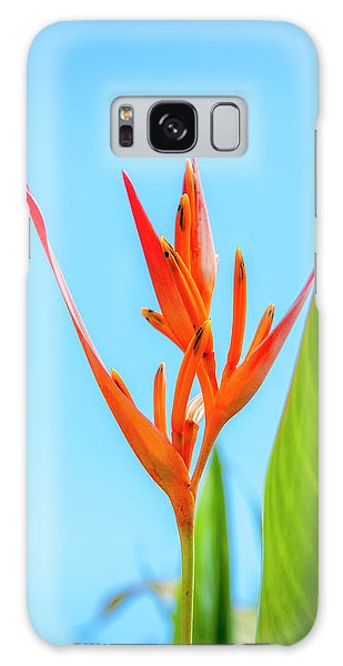 Heliconia Flower Galaxy Case