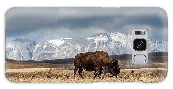 Galaxy Case featuring the photograph Hello Bison by Fran Riley