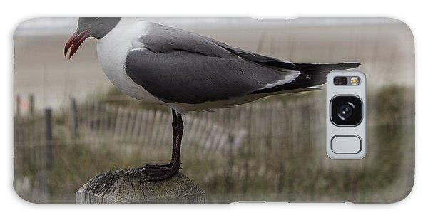 Hello Friend Seagull Galaxy Case