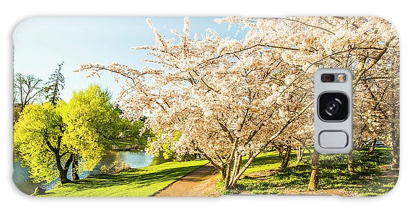 Beautiful Park Galaxy Case - Hello, I'm In Deloraine by Jorgo Photography - Wall Art Gallery