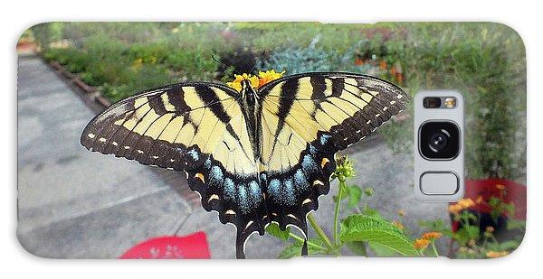 Hello Swallowtail  Galaxy Case