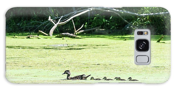 Hen And Baby Wood Ducks Galaxy Case by Edward Peterson
