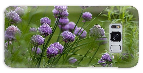 Herb Garden. Galaxy Case