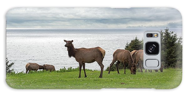 Galaxy Case - Herd Of Elk At Ecola State Park by David Gn