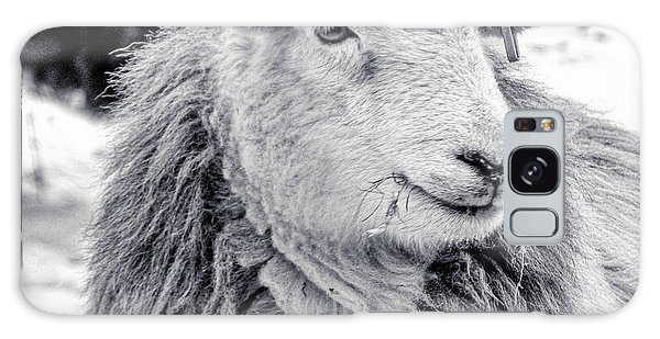 Herdwick Sheep Galaxy Case
