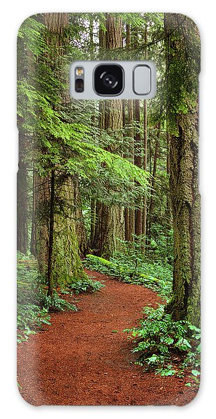 Heritage Forest 2 Galaxy Case by Randy Hall