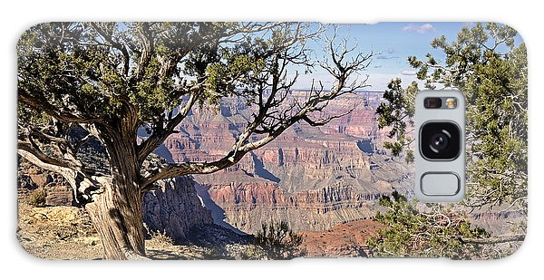 Galaxy Case featuring the photograph Hermits by John Gilbert